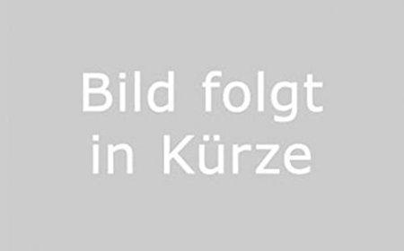 Kick Starter pignon 15,5mm pour Peugeot Speedfight Jet Force Ludix Viva City 2350ccm