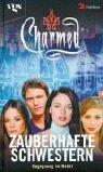 Charmed, Zauberhafte Schwestern, Bd. 24: Begegnung im Nebel - Diana G. Gallagher