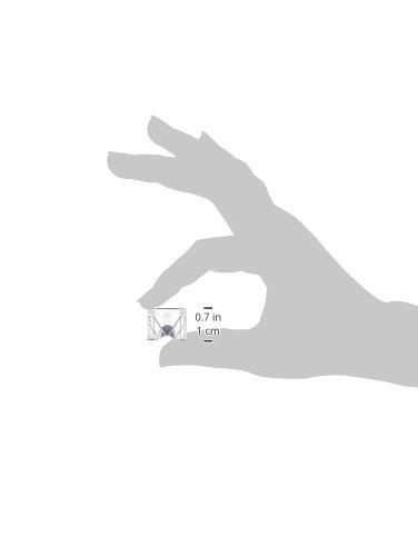 Festool 483372–Schutz Chip anti-ps5SP