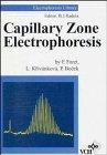 Capillary Electrophoresis (Electrophoresis Library)