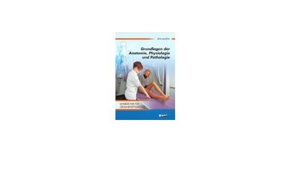 Beste Die Grundlagen Der Anatomie Und Physiologie Galerie - Anatomie ...