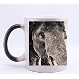 Custom Morphing Mug elephant trunk close up Tea Coffee Cup