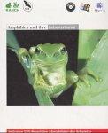 Amphibien und ihre Lebensr�ume Bild