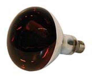 Kerbl 22244 Infrarotlampe Hartglas, 150 W, rot - 12v 100w Ersatzlampe