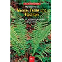 Moose, Farne und Flechten: Häufige und auffällige Arten erkennen und bestimmen