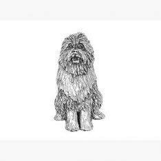 Pewter Bearded Collie Dog Pin Badge or Brooch Gift for Scarf, Tie, Hat, Coat or Bag