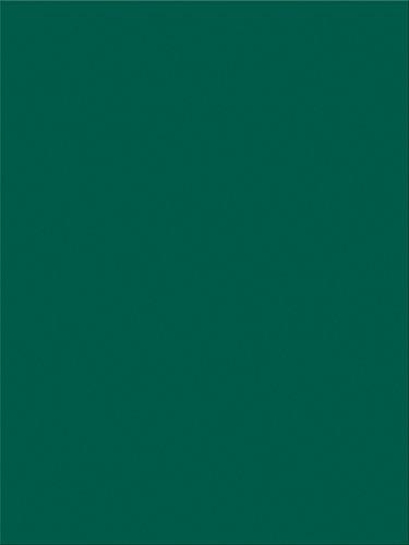 apier, 22,9x 30,5cm 100Stück, dunkelgrün (7804) ()