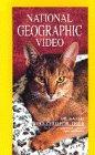 Komplett Video Die Katze: Der zärtliche Tiger - National Geogra [VHS]