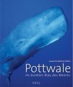 Blau des Meeres ()