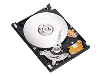 Seagate Festplatte Momentus 160GB 6,4 cm (2,5 Zoll) SATA 8MB 5400RPM -