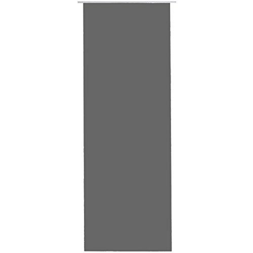 Bestlivings Flächen-Vorhang Blickdicht Schiebe-gardine Raumteiler Schiebe-Vorhang ca.60cm x 245cm, Auswahl: mit Zubehör, Anthrazit - Dunkelgrau
