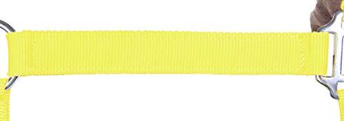 HKM 87424321.0642 Nylonhalfter mit weicher Polarfleece Polsterung Vollblut, gelb/braun