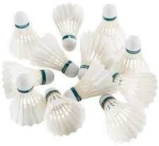 Gyronax White Gold A1 Premium Feather Badminton Shuttlecock(Pack of 10) Good for age15