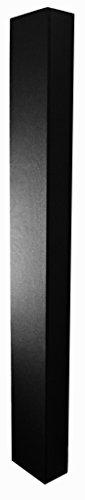NEC SP-65SM 40W Negro - Altavoces (TV / Monitor de altavoces, Alámbrico, 70 - 15000 Hz, Negro, NEC MultiSync V652, V652-TM)
