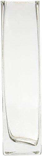 WGV transparent Bud Block Glas Vase, quadratisch, 220,3cm