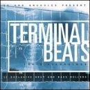 3d-snuggles-terminal-beats-by-various-artists