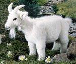 Kösener 4401 - Ziege Fanni, weiß