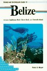 Diving and Snorkeling Guide to Belize: Includes Lighthouse Reef, Glover Reef, and Turneffe Island (Lonely Planet Diving and Snorkeling Guides) -