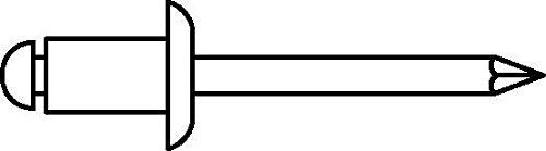 Stahl 12 (Gesipa 0/2900/000/6,0/12/ /01 Blindniete Alu/Stahl Standard (Flachkopf), 6 x 12, 250 Stück, Grau)