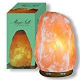 Lampada di sale Salgemma dell'Himalaya 4-6kg