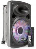 Fenton FPS12 - Sistema portátil de Sonido 12