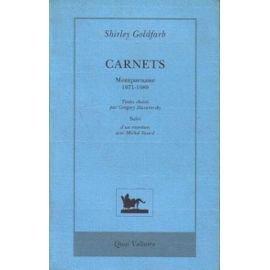 Carnets. Suivi d'un entretien avec Michel Sicard : Montparnasse, 1971-1980