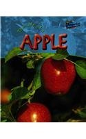 The Life of an Apple (Life Cycles (Raintree Hardcover)) by Clare Hibbert (2004-04-01)