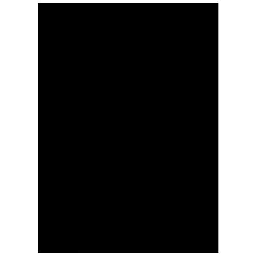 """Vinilo Ventana Autoadhesiva Pegatina de Ventana EASEHOME Privacidad Vinilo para Cristal Película Decorativa Papel Adhesivo Láminas Electrostatica Film Estática Opaco Vinilo de Ventana 17.7""""x78.7""""(45x200cm), Negro"""