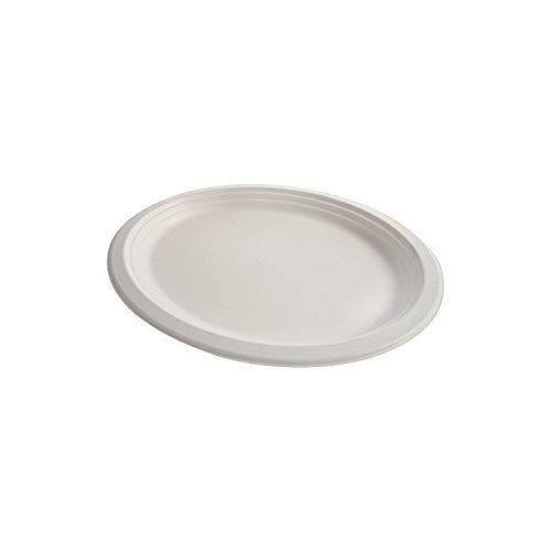 Assiette bio pulpe x25-25 pièces