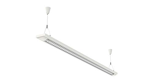 Pendelleuchte Lampe, Birke