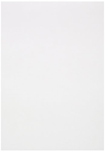 Clairefontaine 975123C Ries Transparentpapier (DIN A4, 21 x 29,7 cm, 100 Blatt, 180 g, ideal für technische Zeichnen) transparent