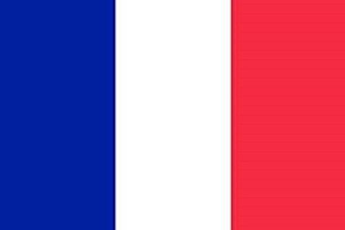 Grand drapeau de la France avec œillets en métal - 100 % polyester - double couture - 250 x 150 cm