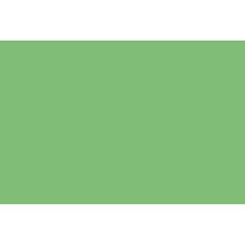 Plakatkarton, Blatt 497x697 mm, 270-300 g, grasgrün, 10Blatt