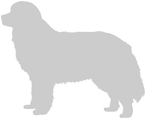 Samunshi® Berner Sennenhund Hunde Aufkleber Autoaufkleber Sticker in 6 Größen und 25 Farben (10x8,1cm silbermetalleffekt) -