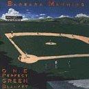 Songtexte von Barbara Manning - One Perfect Green Blanket