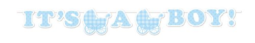 (Creative Converting Banner für Babyparty, Gingham-Muster)