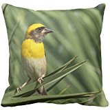 Baya A Weaver Bird 2 R3022382b97cf4a47bdd764ade8e85a84 2izwx 8byvr Pillow Case (Weaver Bird)
