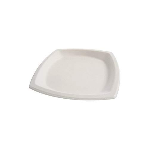 Assiette pulpe 21x21cm (x25) - 25 pièces