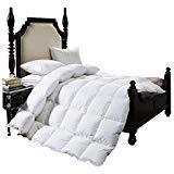 BTWZM Luxuriöse Gänsedaunen Bettdeckeneinlage für Queen-Size-Betten, Hypoallergen, 100% Baumwolle, Daunendicht, Eck-Bettettlaben, maschinenwaschbar King Size 102-by-90inch White Color (White Queen-size-betten)