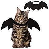 PIVBY Katzen-Kostüm, Haarband, Fledermausflügel, für kleine Hunde, Halloween, Schwarz