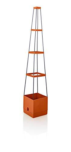 Weltbild - piramide per piante, con supporto per piante rampicanti e supporto per l'irrigazione, torre di fiori, 25 x 25 x 150 cm