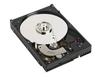 Western Digital WD4000YS Caviar RAID Edition Festplatte 400.0 GB 8.9 ms S-ATAII / 300 16.0 MB -