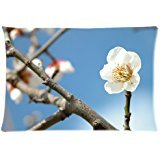 high-grade The arrogant plum Pillow Cases 20x30 inch cover