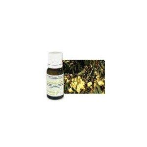 pranarom-huile-essentielle-eucalyptus-menthole-10-ml