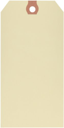 """Aviditi G10073 13 Point Cardstock Pre Wired Shipping Tag, 5-3/4"""" Length x 2-7/8"""" Width, Manila (Case of 1000) by Aviditi"""