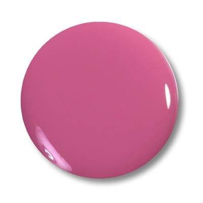 Magic Items Magic Poudre acrylique de couleur - rouge clair n ° 43