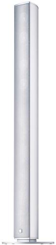 Canton CD 100 II 2,5-Wege Bass-Reflex Stand-Lautsprecher (70/120 Watt, 86,5 dB) Paar alu/Silber