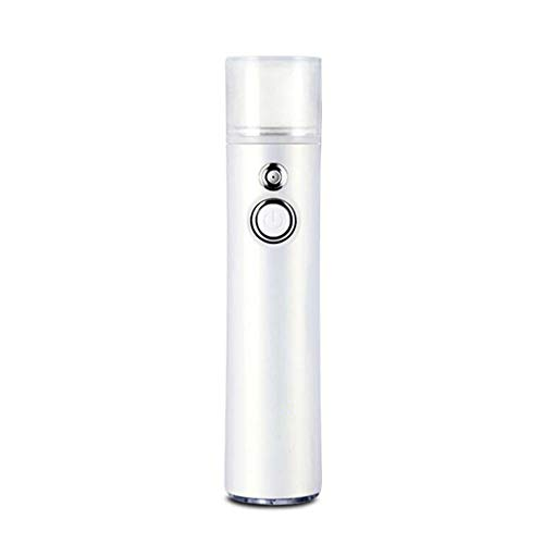 LCTS Nano Facial Atomization Spray, Facial Humectant Steamer Cool Mist, Portable Mini Face Hydration Sprayer Beauty Skin Care mit USB-Kabel -