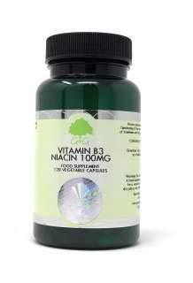 B3 NIACIN 100MG 100 veg. Kapseln GG (vegan)