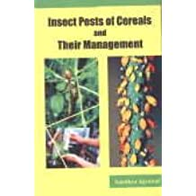 Insect Pest of Cereals and Their Management